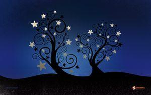 December-10-starleaves__39-nocal-1920x1200