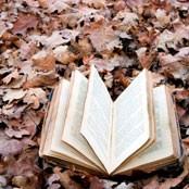 Fall Books